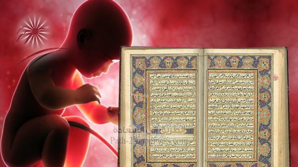 Аяты Хадисы Цитаты